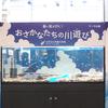 2020/7/14 テーマ水槽「暑い夏がきた!おさかなたちの川遊び」