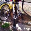 11月25日 変な折り畳み自転車