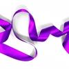 再婚承認を要求します ネタバレ 先読み 小説第249話 あらすじ 紫色のリボンとランドレ子爵の追求