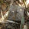 [三角点]★大和山(四等三角点、点名:大和)標石