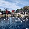 名古屋熱田の穴場紅葉スポット・白鳥庭園から瑞穂区の焼肉「美奈登」へ行ってきた