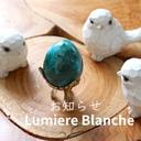 + Lumière Blanche + お知らせBlog