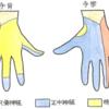 橈骨神経麻痺への対応