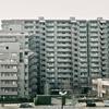 江戸川河畔・konica III 2.0/48mm w/fuji for cn200
