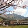 冬の終わりと春を感じる琴石山