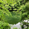 棚橋池(三重県度会)