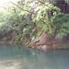キャンプ3回目@橋立川キャンプ場①(ロケーションやキャンプ場について)