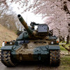 自衛隊の桜祭り: 老兵には桜が似合う