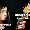 "naonao Guitars Vol.03 - DEAD END ""Blood Music"" YOU(足立祐二)"