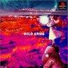WILD ARMS1(ワイルドアームズ1・WA1)感想