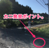 村岡ダブルフル外伝2・「リアル吉本新喜劇」のランナーたち!!