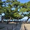 vol.2 岬町から、船で、淡路島へ渡ってみませぬか『大浜海岸』