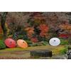 川越・喜多院で紅葉の庭園と五百羅漢を見てきました!