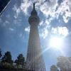 東京観光、どこいこ?