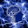 副腎疲労と神経伝達物質の話(上)