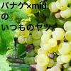 【ノムリエ study.5】ワインに関する『三大〇〇』が意外に勉強になった件ついて【貴腐ワイン】