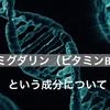 アミグダリン(ビタミンB17)・乳がん自然療法 続編