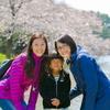 来年こそお団子にお抹茶を頂きながら桜を見たいですね♫