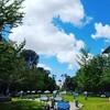 サクラメントへ小旅行。新緑いっぱいで癒される街。※写真多め。