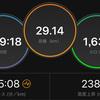 ジョギング29.14km・ハーフRP走@愛知池&静岡マラソンエントリーしました