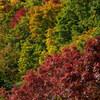 【紅葉ハイシーズン】平日でも定山渓と豊平峡ダムへ向かうのは難しかった