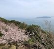 春の淡路島を気ままに海岸線沿いをぐるりとめぐる旅<後編>