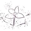 絶滅する食虫植物イシモチソウと命の差別・・・。