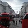 両親ロンドン滞在記 vol.1 - ロンドン市内観光編