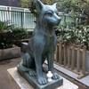 【御朱印プチ情報】日本狼の狛犬がいる東京都市の神社の御朱印が貰えるのは今だけ‼️【酉の市】