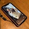 結局、iPhone11に(と、超便利な音声コントロール)