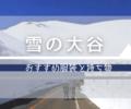 【雪の大谷】5月のおすすめ服装と持ち物【体験談】
