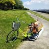 [東京大人外遊び]若洲海浜公園最高!サイクリングしてテントで寝て草原で走り回った
