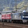 第383列車 「 京鉄博展示!EH800とコキ107の展示回送を狙う 」