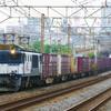 6月19日撮影 東海道線 平塚~大磯間 貨物列車を撮影 ロクヨンと金太郎