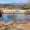 どんぐり池(大阪府吹田)