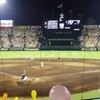 プロ野球中継を2倍面白くする解説者トップ3~江夏・福本・川藤~