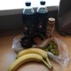 ウクライナ旅行[81] ウクライナ・キエフの物価(2019年10月):食べ物、薬