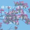 咲かないはずのシンビジウムと『ハナミズキのみち』