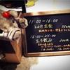 【壌 大手町】オシャレで安くて美味しい立ち飲みバーが東京にオープン