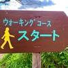 ポケモンGO、歩数が増えるから健康に良いの?