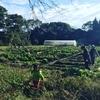 より手頃な価格でより自由に。自然な畑作り始められます【H29年度畑の寺子屋】