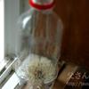 繊細な綿毛がペットボトルの中に?タンポポを使ったマジックを紹介します
