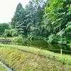 秋田市植物園の池(秋田県秋田)