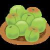 梅の季節到来♪梅好きはテンションの上がる季節です♫今年も梅仕事するぞ❗️