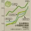 【終焉】野菜暴騰、レタス1230円!