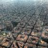 上空から見たバルセロナ
