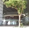 7月6日(土)開催「楽天証券サービス開始20周年記念投資セミナー(大阪)」に参加行ってきました。
