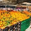 フィレンツェ2017冬旅7(30日PRADA聖地と巨大スーパーマーケット)