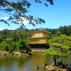 京都旅行/ひまわり歯科 2014/9/24