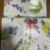 【六花亭通販おやつ屋さん】今月は可愛い花柄包装紙 保冷バッグ 開封レビュー!【スィーツお取り寄せ】